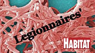 Legionella Prevention Expert Greg Frazier answers to What Should You Do Now to Prevent Legionella?