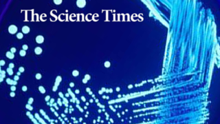 Legionella Risk Management Specialist Greg Frazier quoted in Charissa Echavez's article for the Science Times